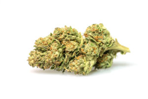 pot zero strain axilia
