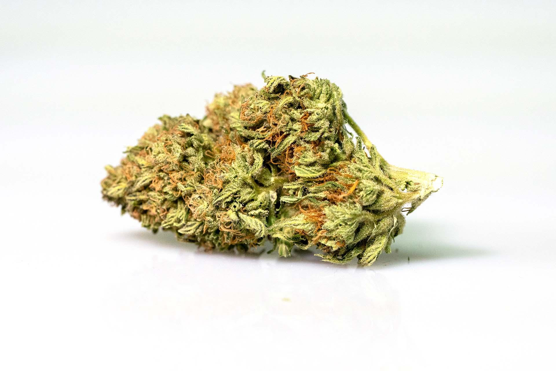 pot zero strain orange kush