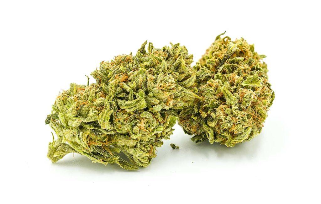 weed strain axilla pot zero organic