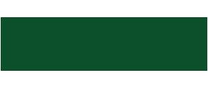 cannabis business times logo